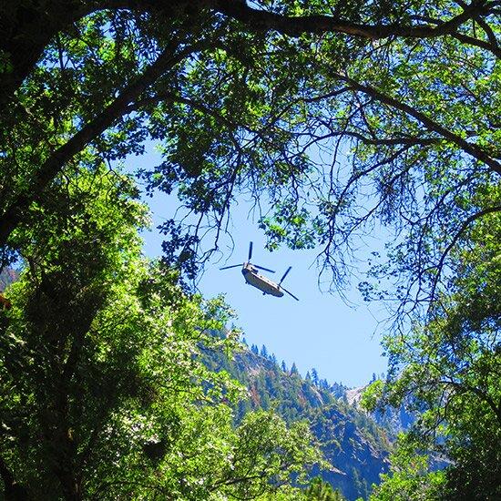 Obama Yosemite