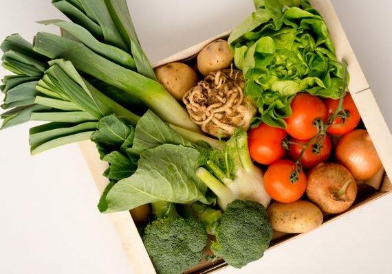veg cover