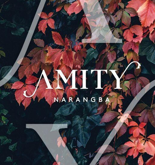 Invest or live in the new development Amity in Narangba