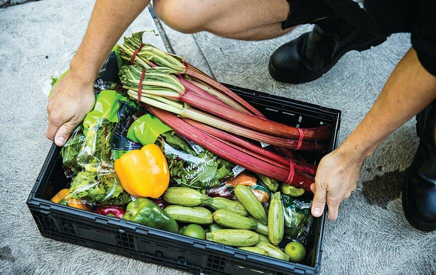 ozharvest food